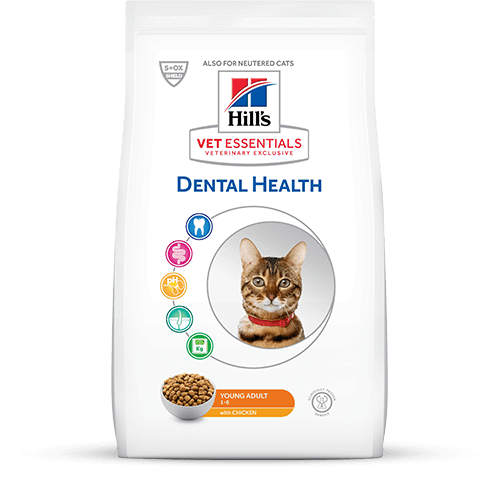 Hill's Vet Essentials Alimento Dental Health para Gatos
